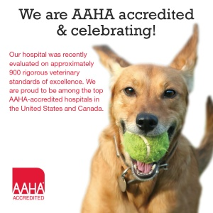 AAHA Accredited Richmond Road Veterinary Clinic